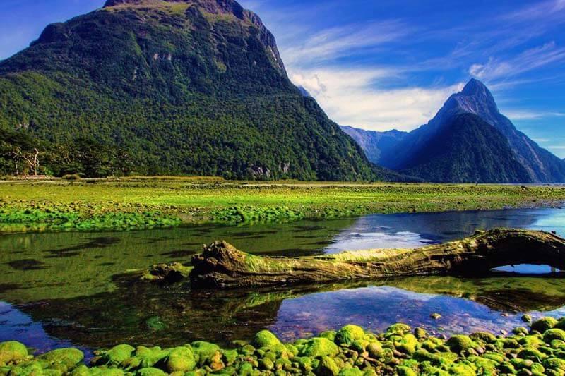 12 Nueva Zelanda